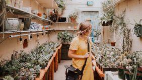 gardening supplies in greenhouse