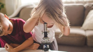 how to set up a 529 plan kids using a microscope