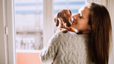 woman cuddling dachshund dog