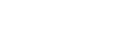 The Shuley Stevens Group